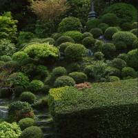 High point: A stone pagoda atop the East Garden's hill adds scale and perspective to a design mass of clipped, globular azaleas.   STEPHEN MANSFIELD PHOTO