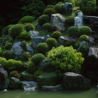 Trickle-down effect: The waterfall winding down through the massed landscape of the main garden's hillside is its main focal point.   STEPHEN MANSFIELD PHOTO