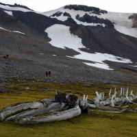 A humpback whale's skeleton, placed as a memorial in 1972 by French researcher and scientist Jacques Cousteau, lies in front of the Comandante Ferraz Antarctic Station on Monday. | AFP-JIJI
