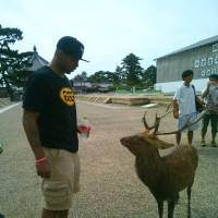 Enjoying the sights: Marquette University alum Joe Chapman enjoys local sightseeing in Nara Prefecture. | COURTESY PHOTO