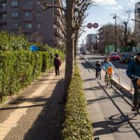 Against the flow:  A family rides against the traffic along the Kaede-dori bike track in Tokyo's Musashino neighborhood in March. | JAMES HADFIELD PHOTO