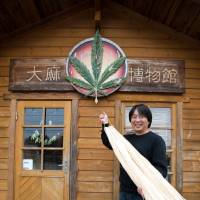 Prized fiber: Junichi Takayasu, curator of Taima Hakubutsukan in Nasu, Tochigi Prefecture, holds the outer layer of cannabis plants that are revered by the Shinto religion. | HIROKO TANAKA