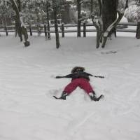 Happy together: The rescued daughter of Richard Cory makes a snow angel during a recent snowfall in Tokyo. | COURTESY OF RICHARD CORY
