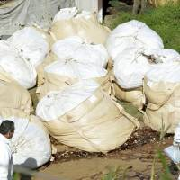 112,000 chickens culled at Kumamoto Farms in bid to curb bird flu outbreak