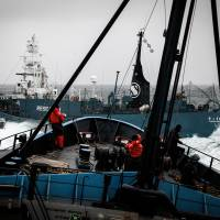 A Japanese whaling vessel cuts across the bow of the Sea Shepherd-operated Steve Irwin in the waters off Antarctica on Feb. 2. | SEA SHEPHERD AUSTRALIA/AFP-JIJI