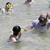 Moyer works with children at the Ocean Family-Hayama Center in Hayama, Kanagawa Prefecture, during the period when he lived in Tokyo after evacuating Miyake Island in 2000. He committed suicide in January 2004. | OCEAN FAMILY-HAYAMA CENTER