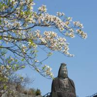 Stone stairs can be used to climb the imposing 27-meter-high Heiwa Kannon and inspect its head. | STEPHEN MANSFIELD