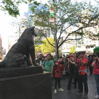 The famed statue of Hachiko the dog, which overlooks a popular meeting spot and is also a tourist attraction, stands on a pedestal close to the 'scramble crossing' intersection. | SATOKO KAWASAKI