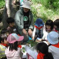 During an environmental event held on May 11 at Arisugawa-no-miya Memorial Park in Tokyo's Minato Ward, a group of children sit in a circle to learn the names of plants. | CHIHO IUCHI