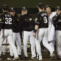 We did it: The Tigers celebrate after their victory over the Carp on Wednesday.   KYODO