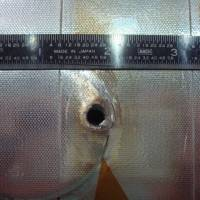 A hole on the space shuttle Endeavour's radiator panel was made by the impact of unknown space debris. | NASA