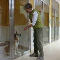 State-of-the-art dog shelter opens in Kansai
