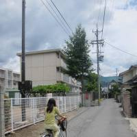 Scene of the crime: A woman rides toward an apartment building (left) that houses Matsumoto's judges, which was the target of Aum Shinrikyo's sarin attack on June 27, 1994. | PAUL MURPHY