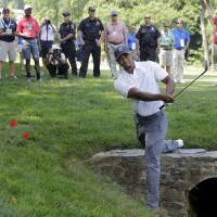 Back on the prowl: Tiger Woods hits out of the rough on the 11th hole during the second round of the Quicken Loans National on Friday. | AP
