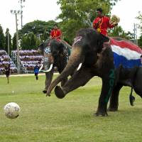 Elephants take part in a soccer match with students to promote the 2014 World Cup, at an elephant camp in Ayutthaya province, Thailand, on Monday. | AFP-JIJI