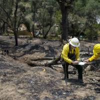Yosemite National Park Fire Marshal Don Coffman (left) and assistant Matt Kim investigate the site where the El Portal fire is believed to have started, in El Portal, California, on Tuesday, | AP