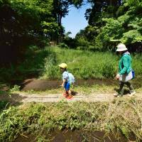 A mother and her child walk inside the Tombo no Sawa (Dragonfly Forest) at the Toyama Municipal Family Park Zoo on May 28. The zoo showcases animals and insects from Japan rather collecting and displaying rare animals. | KYODO