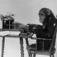 Wild intellect: A chimpanzee seated at a typewriter, presumably typing out the complete works of Shakespeare. The theory that human intelligence is partly based on genetics is controversial, but studies on chimps may make for a less emotionally charged debate. | WIKICOMMONS