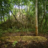 Two new centers of Maya civilization are studied in Mexico