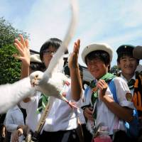 Children release doves to pray for the war dead at Yasukuni Shrine in Tokyo on Friday to mark the 69th anniversary of Japan's surrender in World War II. | SATOKO KAWASAKI