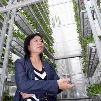 Ong Geok Chwee, chief operating officer of Singapore startup Sky Urban Solutions Holding Pte, explains the virtues of high-end, technology-based vertical farming in Singapore on Aug. 4. The LED-lit indoor factories are equipped with tall cultivation racks, making them suitable for urban areas. | KYODO