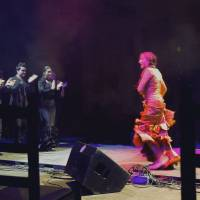 Bajari (Gypsy Flamenco)