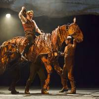 War bonds: Two moving scenes from Nick Stafford's stage adaptation of Michael Morpurgo's book 'War Horse' involving an English farm boy named Albert and his horse, Joey, who are both caught up in the horrors of World War I.   © BRINKHOFF/MOGENBURG