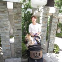Pooch pram: Nao Yokoo says that to prevent dogs from burning their paws on hot pavements, owners should take them to the park in a cart. | JUDIT KAWAGUCHI