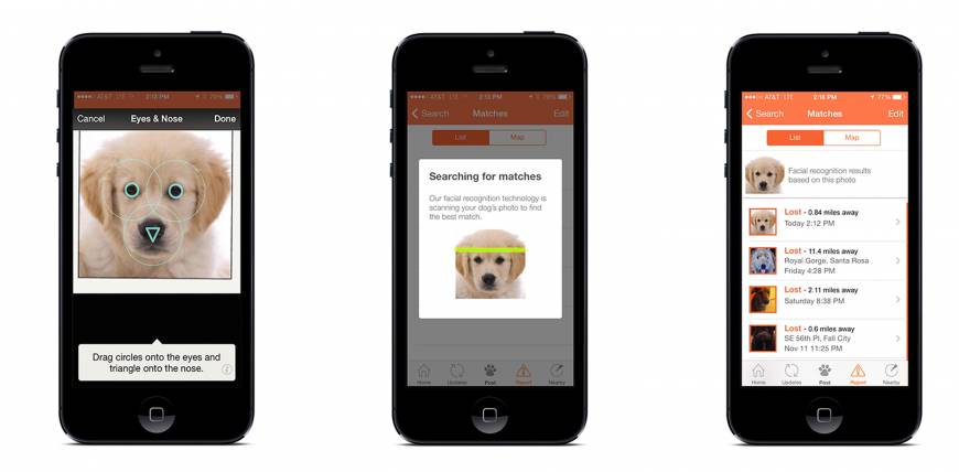Apps help owners find lost dogs