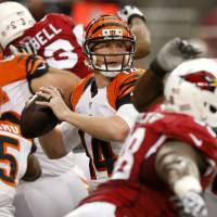 Deep cover: Bengals quarterback Andy Dalton looks to pass against the Cardinals on Sunday in Glendale, Arizona. | AP