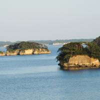 Explosions of green and gold: A view of some of Matsushima's pine-clad islands in Miyagi Prefecture. | DAVEY YOUNG