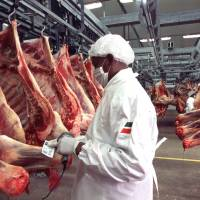 Close to the bone: Factory farms generate a surprising amount of environmental waste as they work to provide Americans with the flesh of 10 billion animals a year.   BLOOMBERG