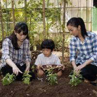 Prince Hisahito, the first and only son of Prince Akishino and Princess Kiko, picks herbs with his sisters, Princess Mako (left) and Princess Kako, at Prince Akishino's residence in Tokyo's Akasaka district on Aug. 7. Prince Hisahito, the only grandson of Emperor Akihito and Empress Michiko, celebrated his eighth birthday on Saturday. | AP