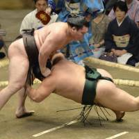 As expected: Yokozuna Hakuho overpowers Chiyotairyu at the Autumn Grand Sumo Tournament on Sunday in Tokyo. | KYODO