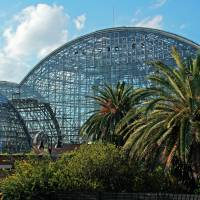 The Yumenoshima Tropical Greenhouse Dome is heated by burning trash. | KIT NAGAMURA