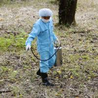 Bad blood: A worker sprays insecticide in Tokyo's Yoyogi Park earlier this month after mosquitoes were found carrying the dengue virus.   KYODO