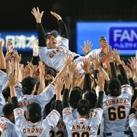Familiar scene: Yomiuri Giants players give manager Tatsunori Hara the traditional victory toss after winning the Central League regular-season title by beating the host Yokohama BayStars 6-3 on Friday. | KYODO