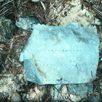 Debris revives hope of finding Amelia Earhart plane