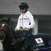 Fukunaga eyes Arc glory
