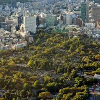 Necropolis: Aoyama Cemetery, occupying some of Tokyo's most valuable land, can be seen from Roppongi Hills. | DAVEY YOUNG