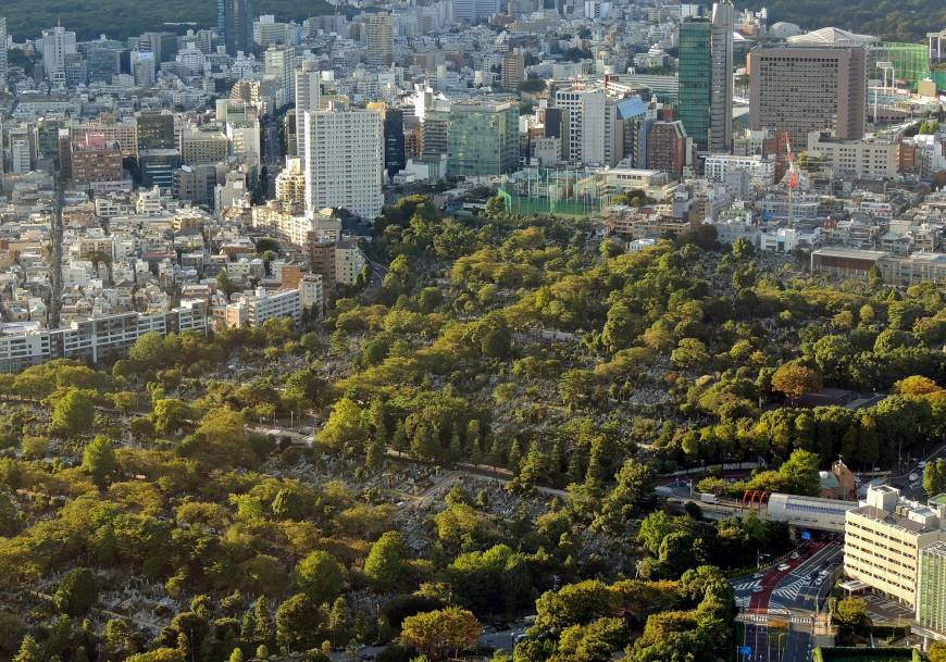 Grave hunting in Tokyo's realms of the dead