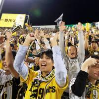 Fired up: Hanshin Tigers fans support their team during Saturday's game at Koshien Stadium. | KYODO