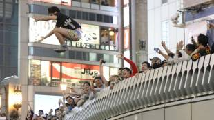 Leaping into japan series
