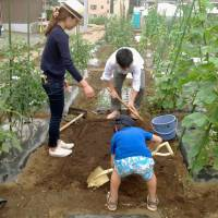 Tokyo dwellers take to the land to cultivate own farm produce