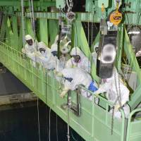 Workers remove fuel rods from the storage pool in the reactor 4 building at the Fukushima No. 1 power plant in October. | KYODO