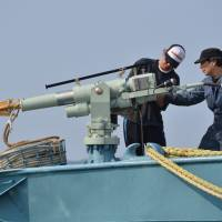 Japan to hunt Antarctic whales, but cut catch target by two-thirds