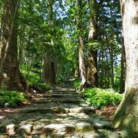 Putting on my boots, going back to my roots: The Kumano Kodo trail was originally used only by the nobility, but now anyone with a pair of hiking boots and a penchant for communing with deities is welcome. | KYODO