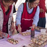 Amway volunteers help locals serve up takoyaki dumplings made with famous Minamisanriku octopus. | SKYE HOHMANN