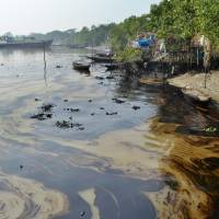 An oil slick lines the banks of the Shela River after a tanker sank in one of the world's largest mangrove forests, threatening wildlife in the UNESCO World Heritage site of the Sundarbans, in Bangladesh on Friday. | AP
