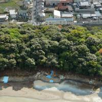 Imperial Household Agency loosens up on access to Osaka burial mound